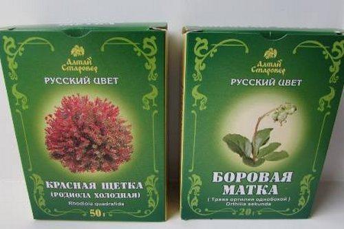krasnaya_schetka_i_borovaya_matka_sovmestnoe_primenenie-2