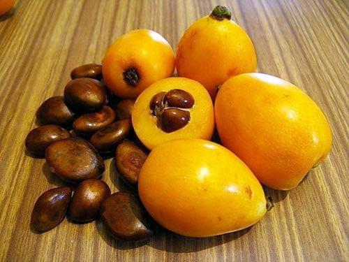 frukt_mushmula_poleznye_svojstva_i_protivopokazaniya-2